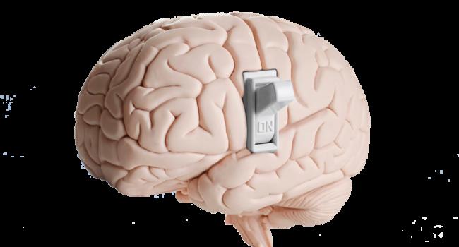 la-mente-consciente
